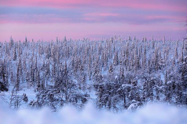 Pohjoinen kutsuu talvilomalaisia. Varsinkin Etelä-Suomen koulujen hiihtolomaviikolla matkaajia on paljon.