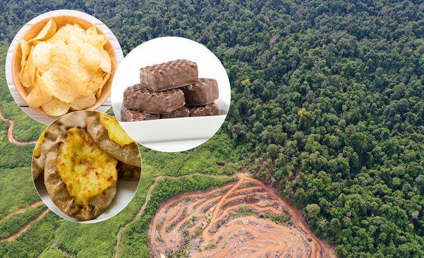 Palmuöljyä kasvatetaan pääasiassa Kaakkois-Aasiassa.
