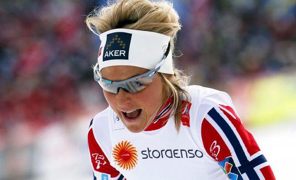 Therese Johaug oli riemuissaan, vaikka tunnustikin hivenen säikähtäneensä joukkuetoverin riemua.