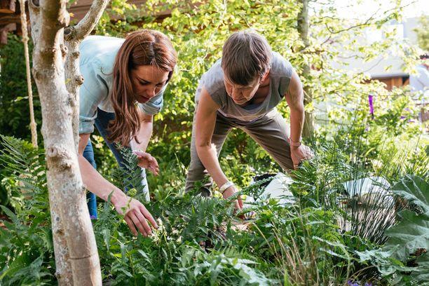 Catherine tutki puutarhan kasveja.