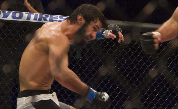 Zubaira Tukhugov suljettiin ulos UFC:stä iäksi.