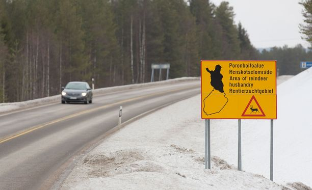 Porokello-sovelluksen tavoitteena on puolittaa Suomen porokolarien määrä vuoteen 2020 mennessä.