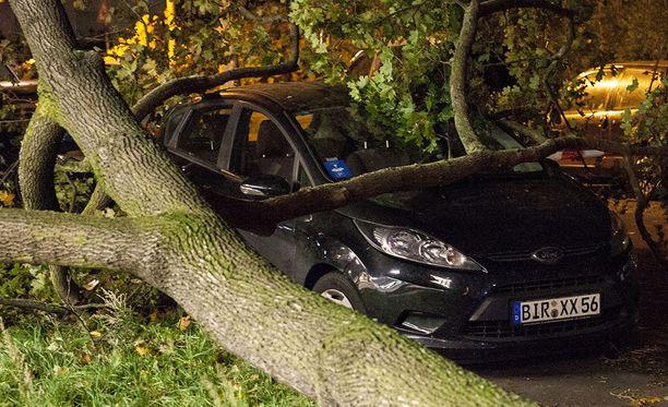 Ainakin seitsemän ihmistä on kuollut kaatuneiden puiden alle, kun voimakas myrsky riepottelee Saksaa.