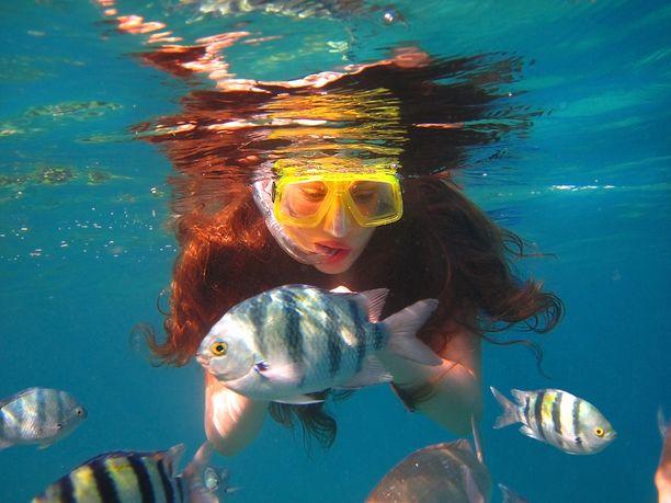 Israelin Eilat on suosittu sukelluskohde.