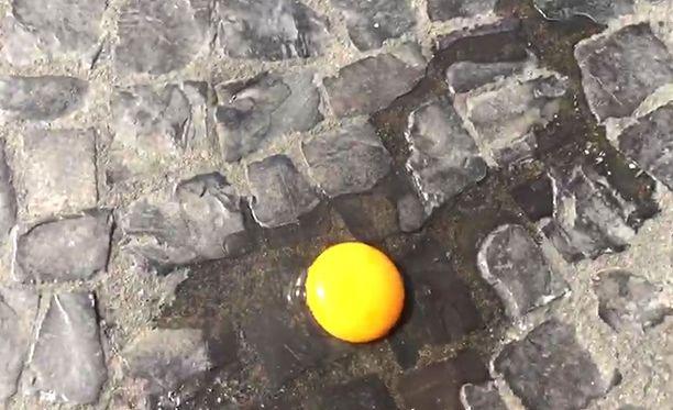 Iltalehti testasi, voiko kananmunaa paistaa yli 40 asteen helteessä.