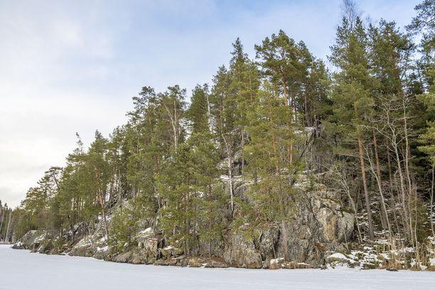Maalaus löytyi Pöyhönsaaren länsirannalta.
