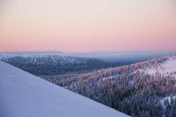 Kesänkitunturio Pallas-Yllästunturin kansallispuistossa.