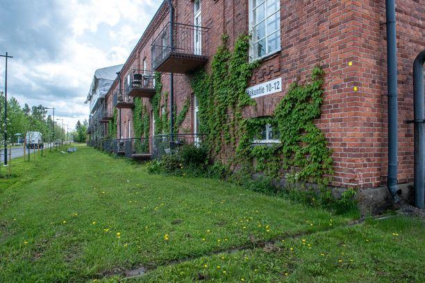 Pioneeripuiston vierailijoita tervehtivät ensin vanhat, punatiiliset rakennukset.