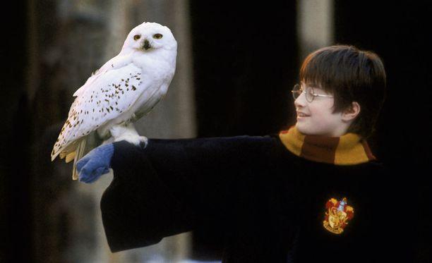 Harry Potter tulee taas - sinfoniaorkesterin säestämänä.
