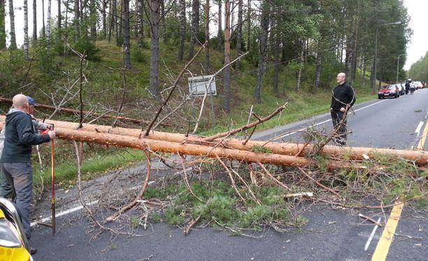 Iltaseitsemältä nelostiellä Konginkankaalla liikenteen pysäyttänyt puu saatiin yhteistyössä siirrettyä sivuun kymmenessä minuutissa ja kymmenet seisahtuneet autot pääsivät jatkamaan matkaa.