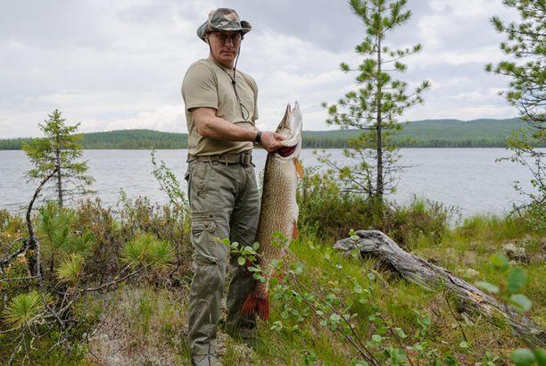 Kreml kertoo Putinin kalastaneen näin komean vonkaleen.