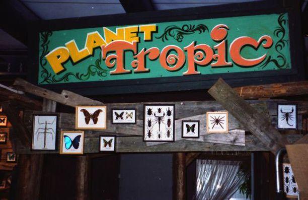 Planet Tropicissa oli näytteillä muun muassa perhosia.