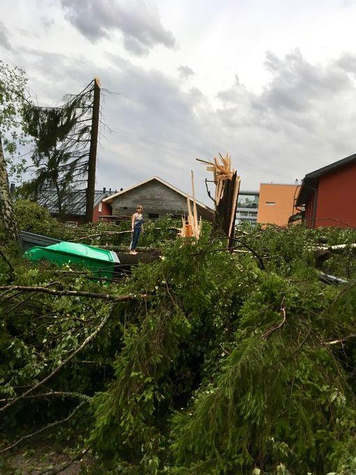 """Parikymmentä puuta kaatui asuinalueen lähellä Helsingin Pakilassa. """"Näkymä oli kuin sodan jäljiltä"""", kuvan ottanut kuvailee."""