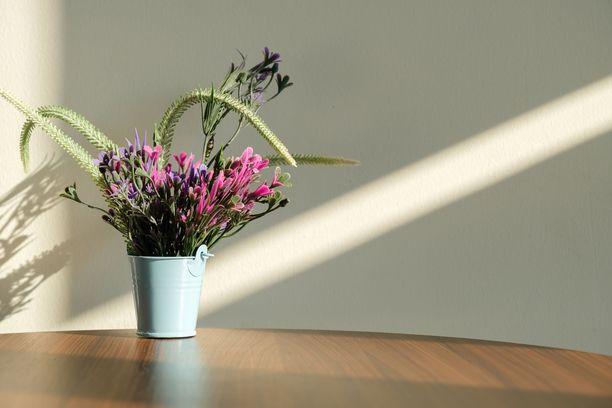 Runsas kukkapuska keväisessä ämpärissä tuo takulla aurinkoista tunnelmaa kotiin.