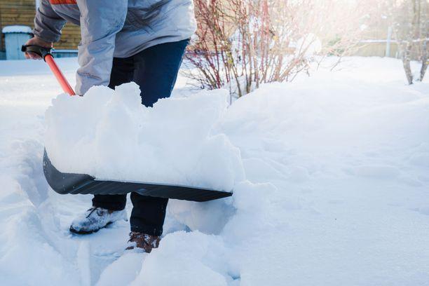 Hyvästä lihaskunnosta on hyötyä myös lumitöissä.