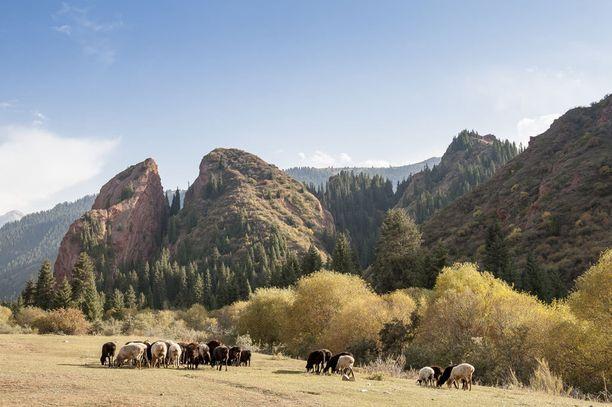 Kirgisian maisema on karua mutta kaunista.