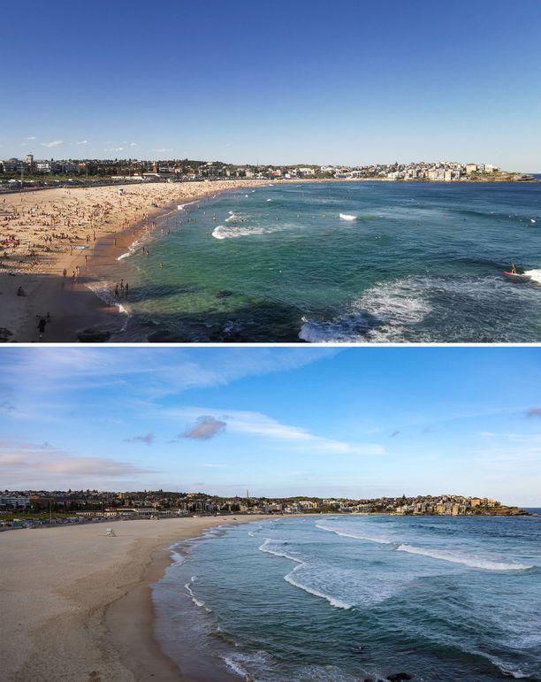 Sydneyn Bondi Beach tyhjeni täysin, kun viranomaiset joutuivat sulkemaan sen.