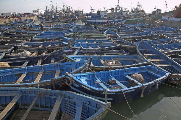 Siniseksi maalattuja veneitä Essaoiran kalastajasatamassa Marokossa.