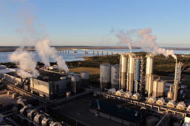 Sellutehdas sijaitsee Uruguayjoen varrella. Silta johdattaa joen vastarannalle, Argentiinaan.