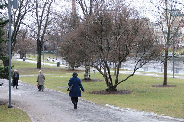 Kuva joulukuun 19. päivältä 2011, jolloin Tampereellakaan ei ollut lumesta tietoakaan.