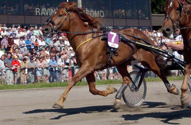 Viesker voitti urallaan hurjat viisi ravikuninkuutta.