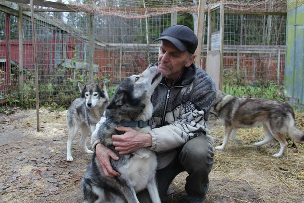 Timo Salonen kertoo hoitaneensa eläimiä hyvin.