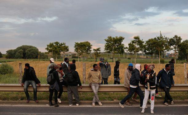 Siirtolaisia Ranskan Calais'ssa tällä viikolla.