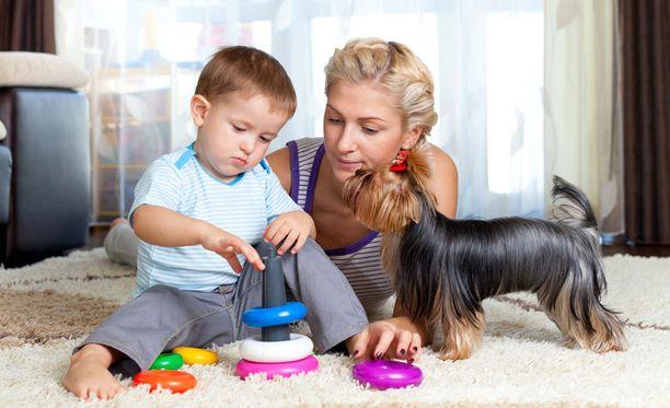 Omatoimisuuteen kannustaminen kehittää lapsen ongelmanratkaisukykyä.