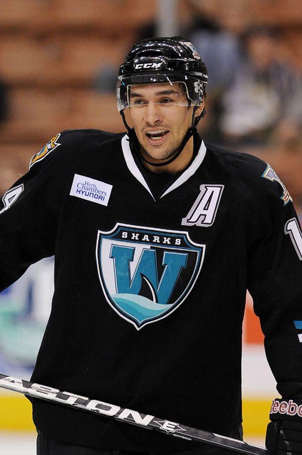 Jonathan Cheechoo farmijoukkue Worcester Sharksin paidassa vuonna 2010.
