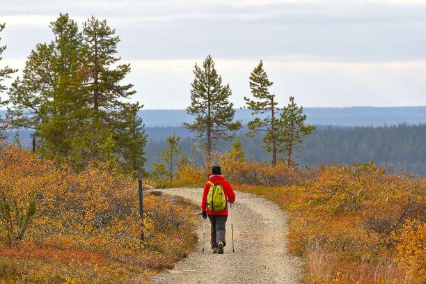 Saariselältä on hyvä lähteä retkelle Urho Kekkosen kansallispuistoon.