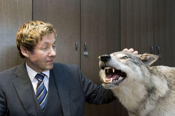 Sylvään koulun rehtori Jari Andersson ja täytetty susi työhuoneessa. Arkistokuva.