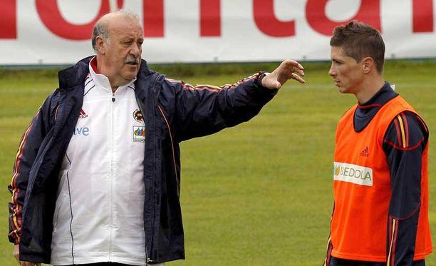 Tiedossa ei ole, mitä Vicente del Bosque ja Fernando Torres keskustelivat kuvan tilanteessa, mutta se saattoi hyvinkin liittyä netissä roikkumiseen.
