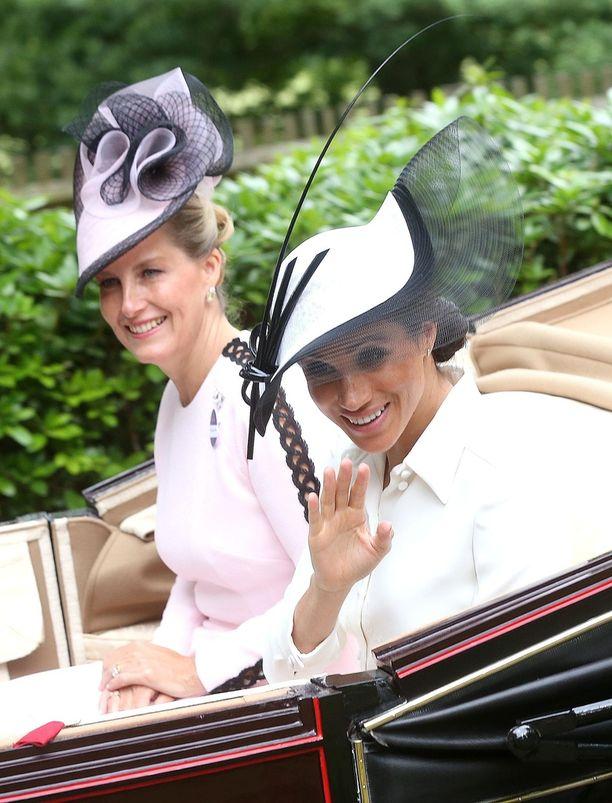 Sussexin herttuatar esiintyi hurmaavana edustustilaisuudessa.