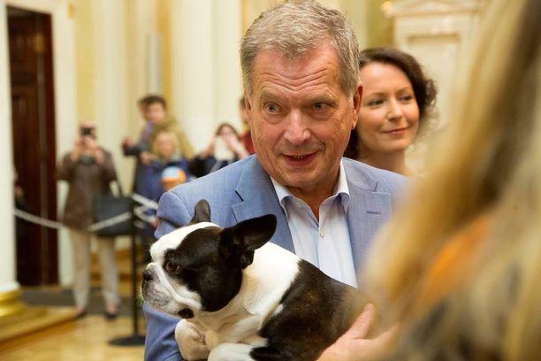 Sauli Niinistö kantoi tilaisuudessa mukanaan suloista bostoninterrieri Lennua.