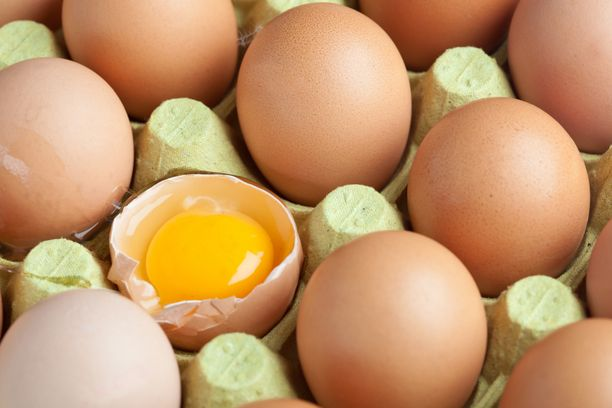 Tuore kananmuna on kirkas.