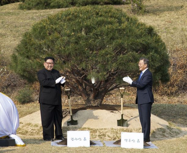Kim Jong-un vaikutti välillä hengästyneeltä, kun hänen piti tarttua lapioon ja istuttaa puu.