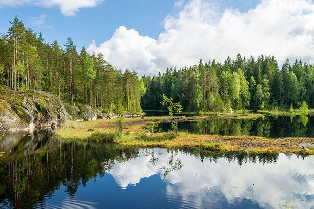 Nuuksio kerää Etelä-Suomen kansallispuistoista eniten kävijöitä.