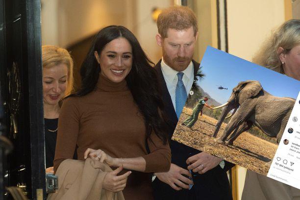 Herttuaparin julkaisemista luontokuvista nousi taannoin kohu.