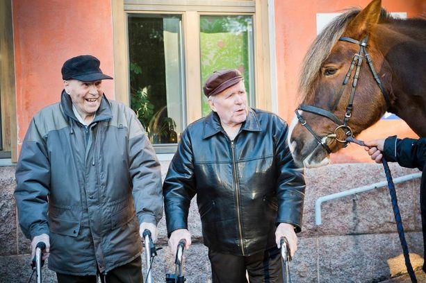 Bruuno Averla ja Joel Vesalainen ovat hevosmiehiä. Vesalainen on saanut tänä vuonna kutsun Linnan juhliin.