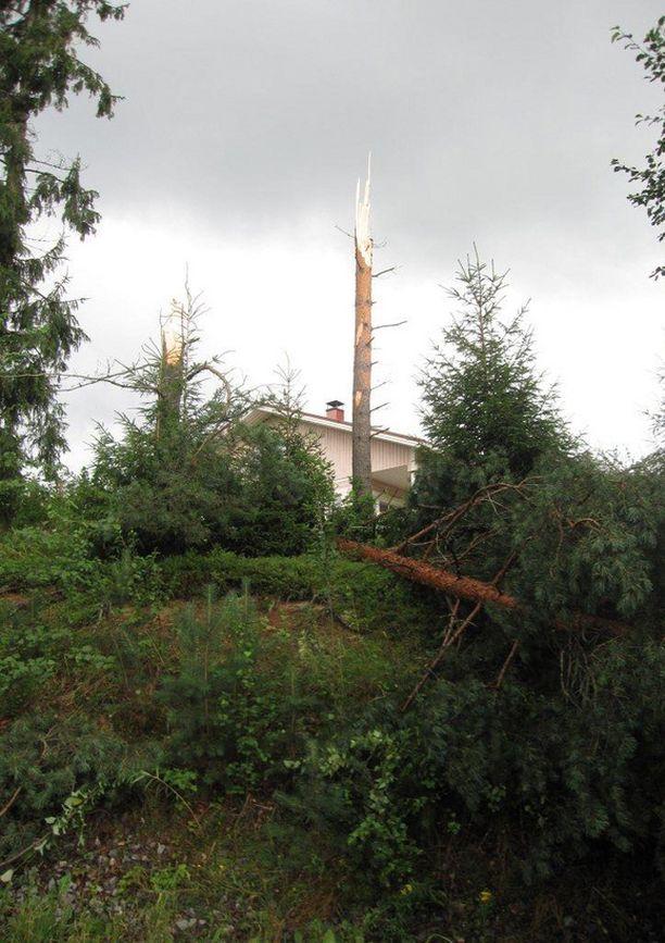 Trombi katkoi puita keskeltä Kankaanpäässä keskiviikkoiltapäivänä.