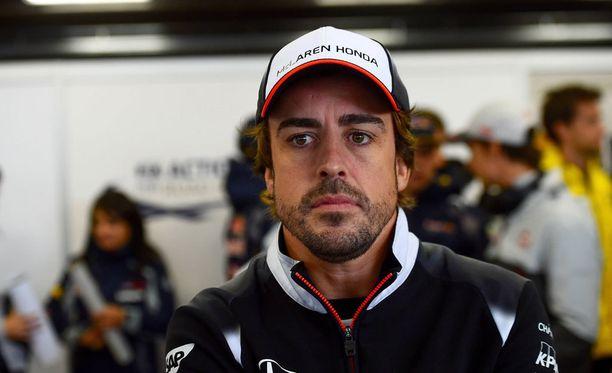 Fernando Alonso tylytti Sebastian Vetteliä oikein kunnolla.