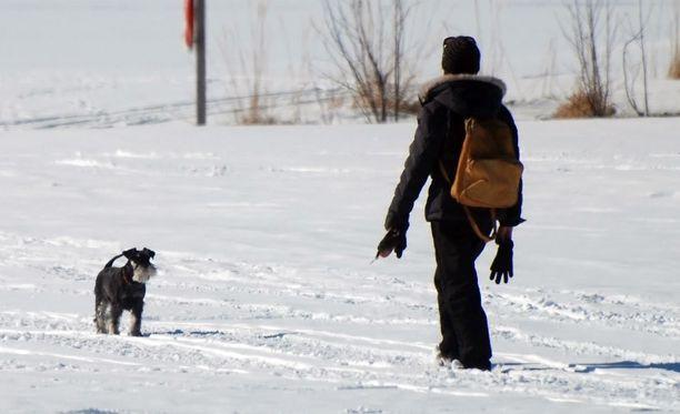 Tavalliseen kävelyyn kannattaa yhdistää teholiikkeitä reisille, kuten sivusuuntaan kävelyä.