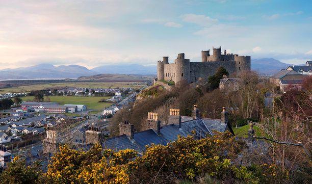Harlech tunnetaan tällä hetkellä komeasti linnastaan. Se saattaa saada rinnalleen toisen vetonaulan, jos maailman jyrkimmän asuinkadun ennätys siirtyy kaupunkiin.