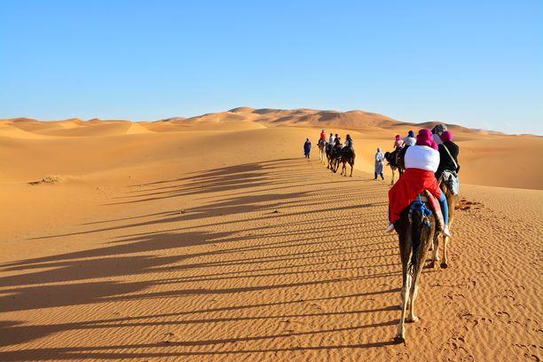 Monet alueet esimerkiksi Afrikassa voivat lämmetä liian kuumiksi asua. Kuvituskuva Länsi-Saharasta.