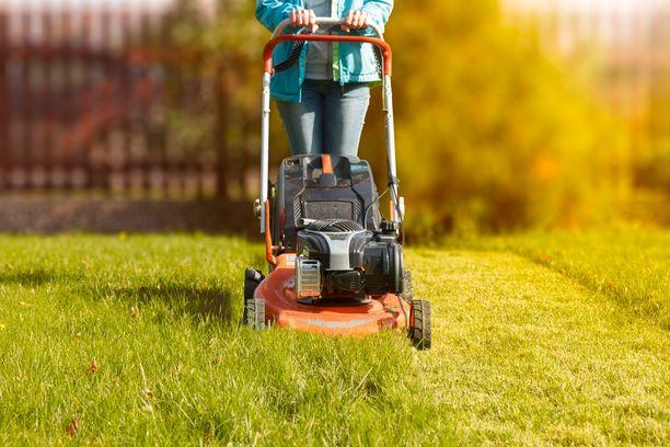 Kerttulan mukaan oleellisinta on, että nurmikko leikataan säännöllisesti.