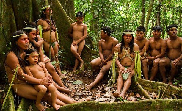 Amazonin sademetsässä sinnittelee vielä pieniä heimoja. Nämä ihmiset kuuluvat Huaorani-heimoon.