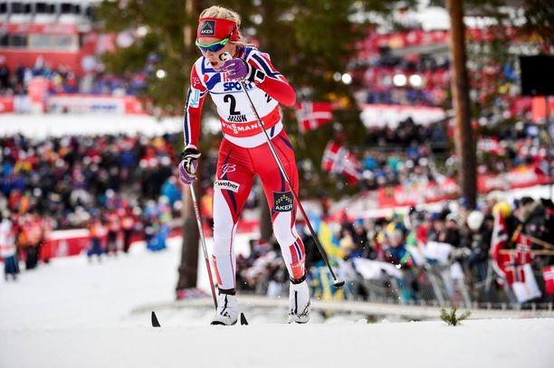 Ylämäet ovat Therese Johaugin suurta herkkua. Kuvassa hän nousee Falunin murhamäkeä MM-kisoissa 2015.
