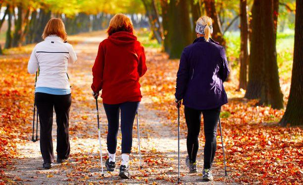 Reipas kävely on oivaa liikuntaa.
