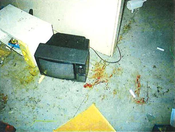 Sisällä tuvassa oli jälkiä kissojen tappamisesta. Veritahrojen lisäksi mökin irtaimisto oli levitetty hujan hajan.