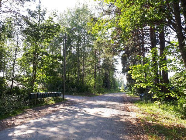 Savonlinnassa kadonnutta Anni Törniä etsittiin keskiviikkona metsäisemmiltä alueilta.